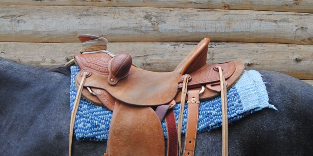 Western Saddle Fit - Rod's Saddle