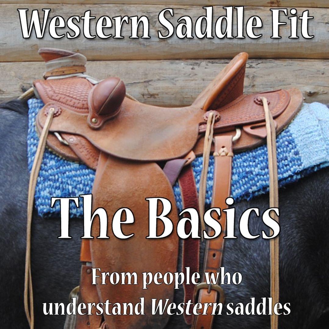 Western Saddle Fit - The Basics (DVD)